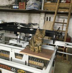 Кот Потапка хозяин станка